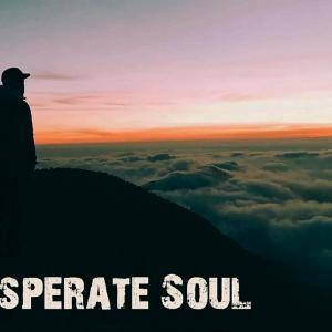The Desperate Soul - Stand Alone